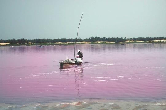 Le Lac Rose  – SENEGAL