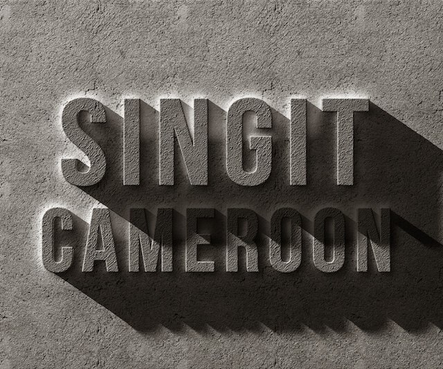 Music : Sing It Cameroon 2014, the tele-reality music competition
