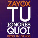 "Single : ""Tu ignores quoi"" - Zayox (Review)"