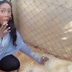 People : Tiwa Savage se relaxe durant un Safari en Afrique du Sud