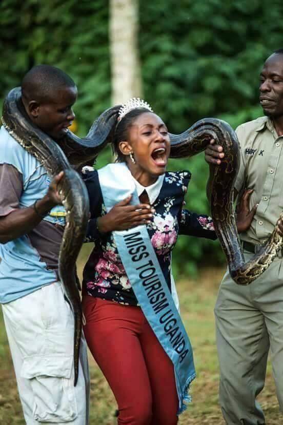 miss-tourisme-ouganda-2015-serpent-jewanda