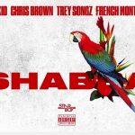 "Single : ""Shabba"" - Wizkid ft. Chris Brown, Trey Songz, French Mo..."